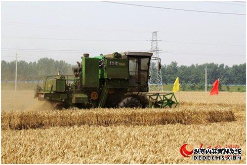 河南:如何从中原粮仓到国人厨房  中原熟天下足。河南常年种小麦8000万亩以上,产量占全国的1/4,与小麦相关的规模以上企业1700多家。然而,一个问题始终困扰河南,怎么既保粮食稳产,又促农民增收?……【详细】