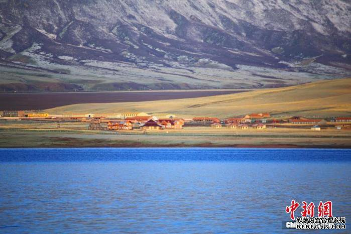 [野生动植物]甘肃山丹马场鸾鸟湖成鸟类天堂