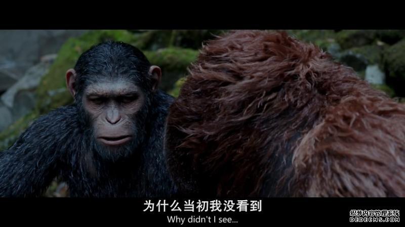 《猩球崛起3:终极之战