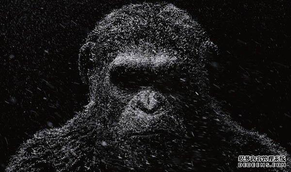 猩球崛起3人物关系图角色介绍 凯撒为家而战再度出发
